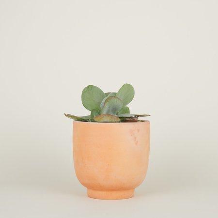 Steven Alan Medium Footed Planter - Terracotta