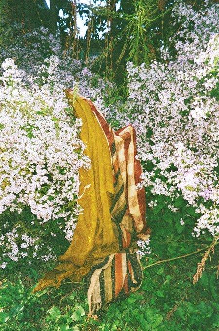 Colorant WILD SILK SCARF -  CHARTREUSE