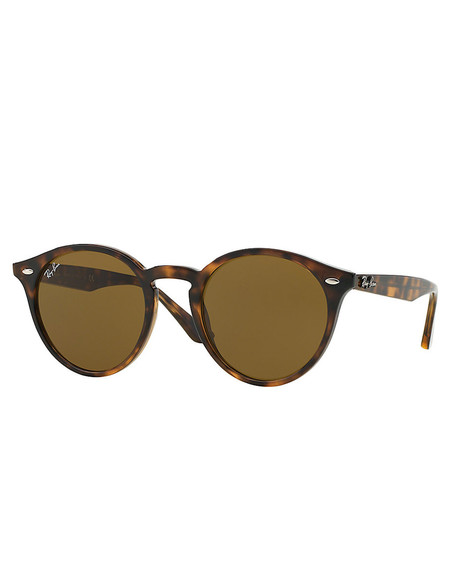 Ray-Ban 2180 Sunglasses Dark Havana