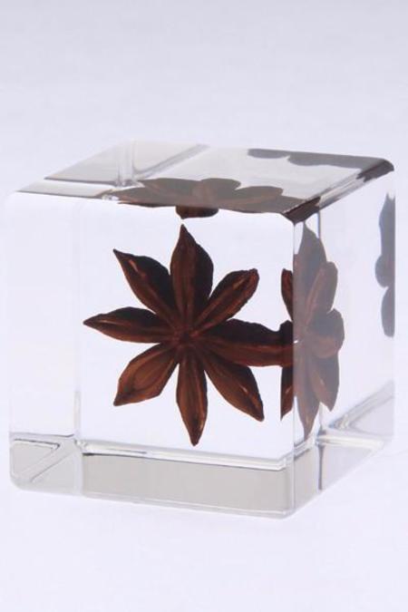 Usagi No Nedoko Sola Cube: Star Anise