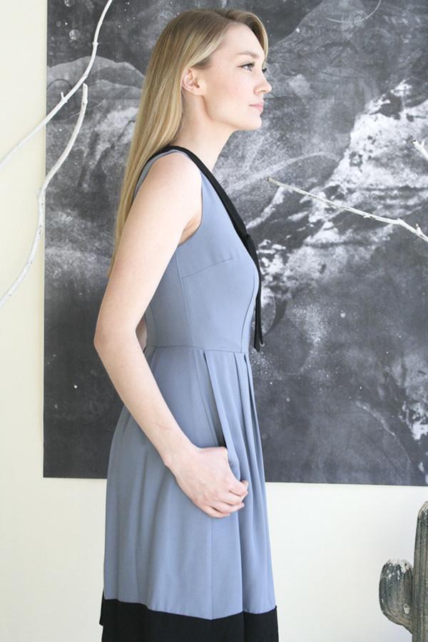 Birds of North America Hillstar Dress - Light Blue