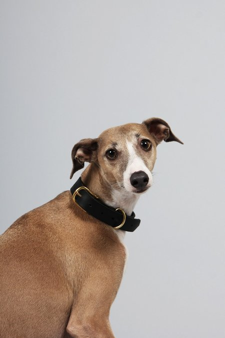 Yu Mei X GAG Dog Collar - black
